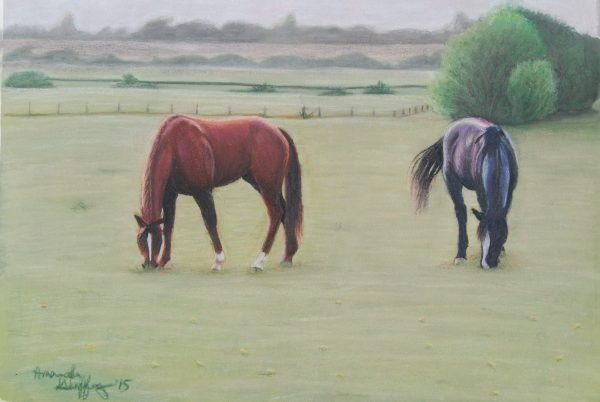 horses grazing peacefully in foggy meadow