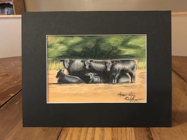 black angus in pasture with blue highlights