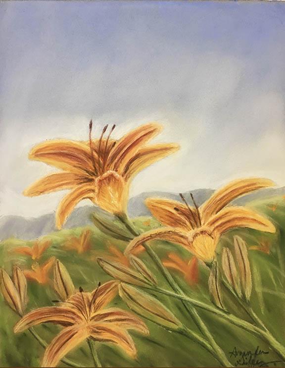 orange lilies in field